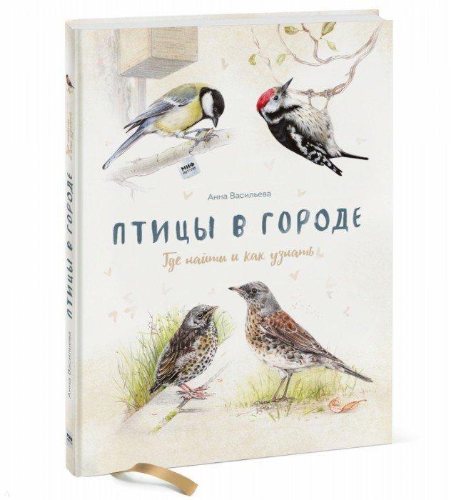 Иллюстрация 1 из 88 для Птицы в городе. Где найти и как узнать - Анна Васильева   Лабиринт - книги. Источник: Лабиринт