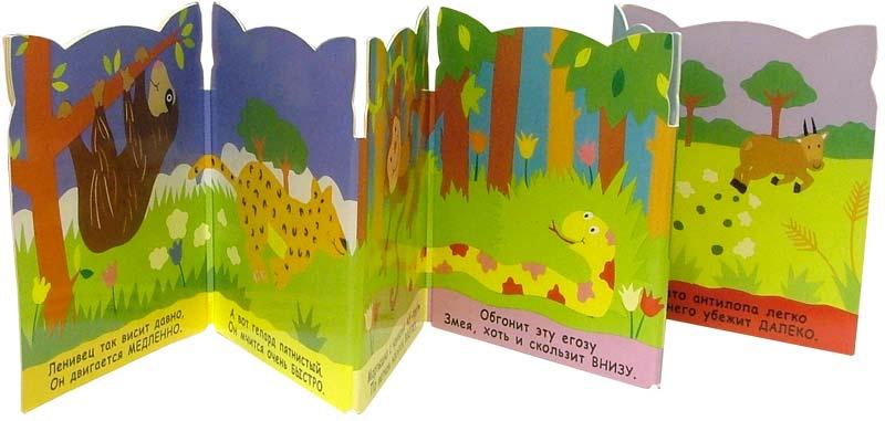 Иллюстрация 1 из 2 для Противоположности. Поиграй со мной (книжка-раскладушка) - Алла Сорокина | Лабиринт - книги. Источник: Лабиринт