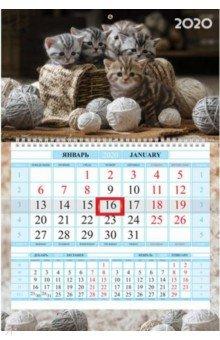 Zakazat.ru: 2020г. Календарь квартальный, 1 блок, Соло-Люкс, Пушистые котята (1Кв1гр4ц_20730).