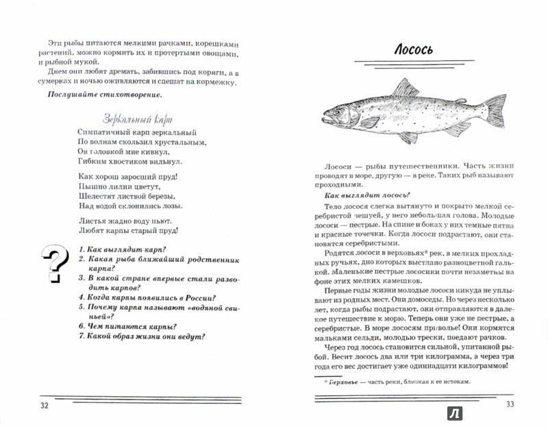 Иллюстрация 1 из 14 для Рыбы. Какие они? Книга для воспитателей, гувернеров и родителей - Татьяна Шорыгина | Лабиринт - книги. Источник: Лабиринт