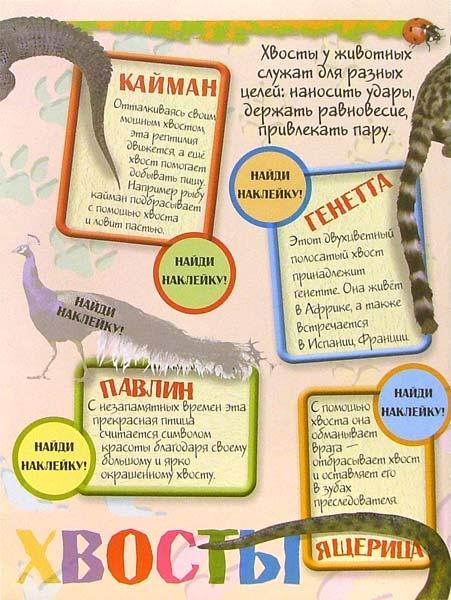 Иллюстрация 1 из 2 для Зоопарк с наклейками (красная) | Лабиринт - книги. Источник: Лабиринт