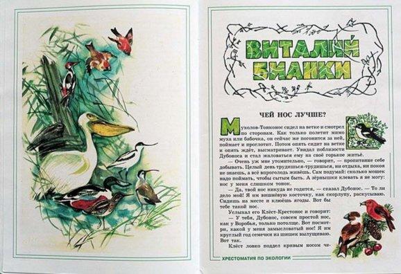 Иллюстрация 1 из 13 для Зеленые страницы | Лабиринт - книги. Источник: Лабиринт