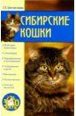 Константинова Екатерина Сибирские кошки