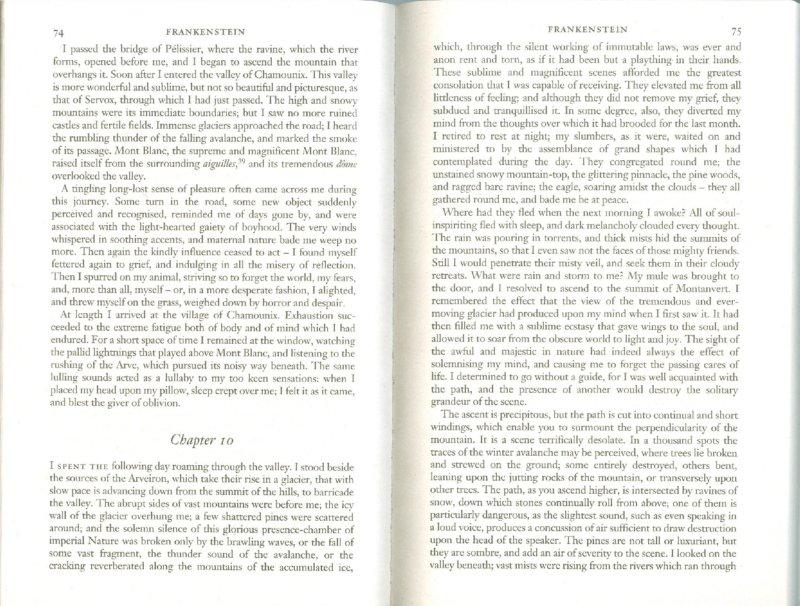 Иллюстрация 1 из 8 для Frankenstein - Mary Shelley   Лабиринт - книги. Источник: Лабиринт