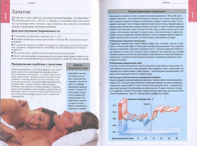 Иллюстрация 1 из 14 для Беременность от зачатия до родов   Лабиринт - книги. Источник: Лабиринт
