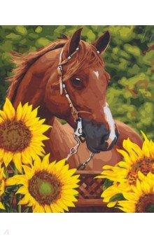 Купить Рисование по дереву 40*50 Каштановый конь (Н122), Русская живопись, Создаем и раскрашиваем картину