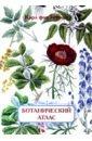 Ботанический атлас. Карл фон Гофман, Гофман Карл фон