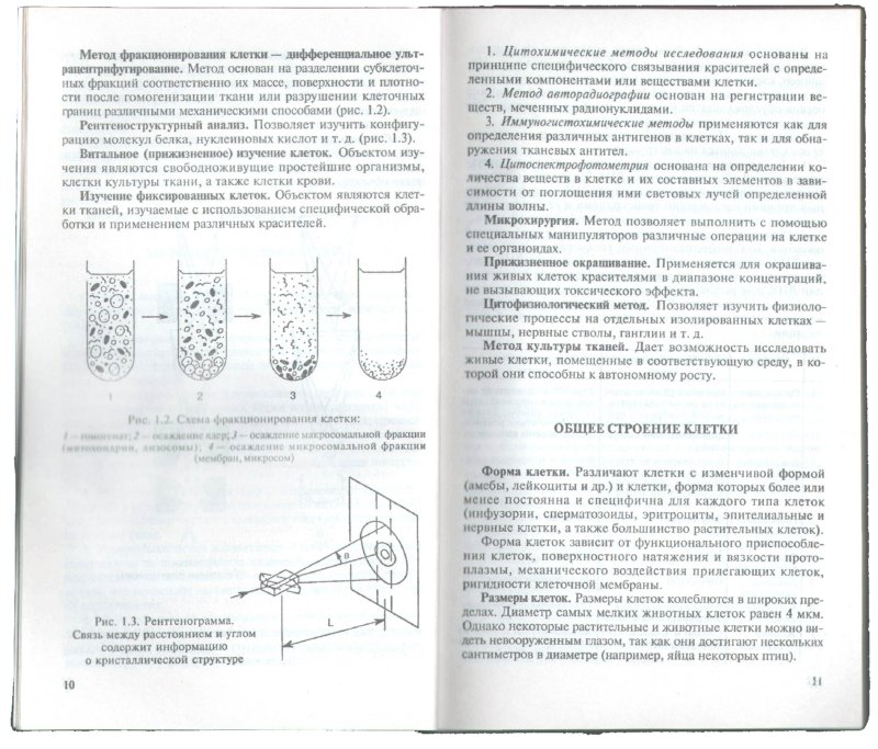 Иллюстрация 1 из 33 для Биология: Пособие для поступающих в вузы. Том 1 - Николай Чебышев | Лабиринт - книги. Источник: Лабиринт