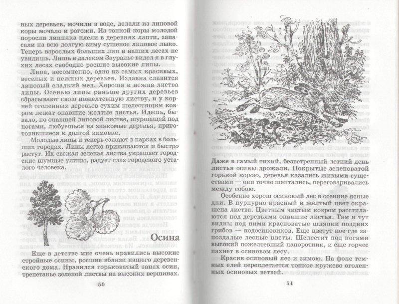 Иллюстрация 1 из 7 для На теплой земле: Рассказы - Иван Соколов-Микитов | Лабиринт - книги. Источник: Лабиринт