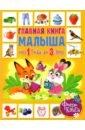 Обложка Главная книга малыша от 1 года до 3 лет. Фотокнига