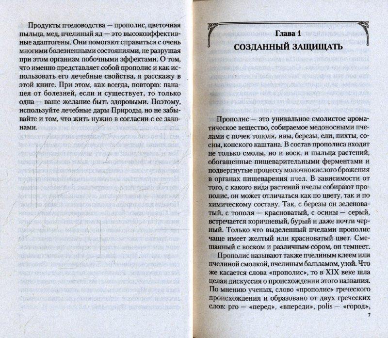 Иллюстрация 1 из 11 для Прополис. Мифы и реальность - Иван Неумывакин | Лабиринт - книги. Источник: Лабиринт