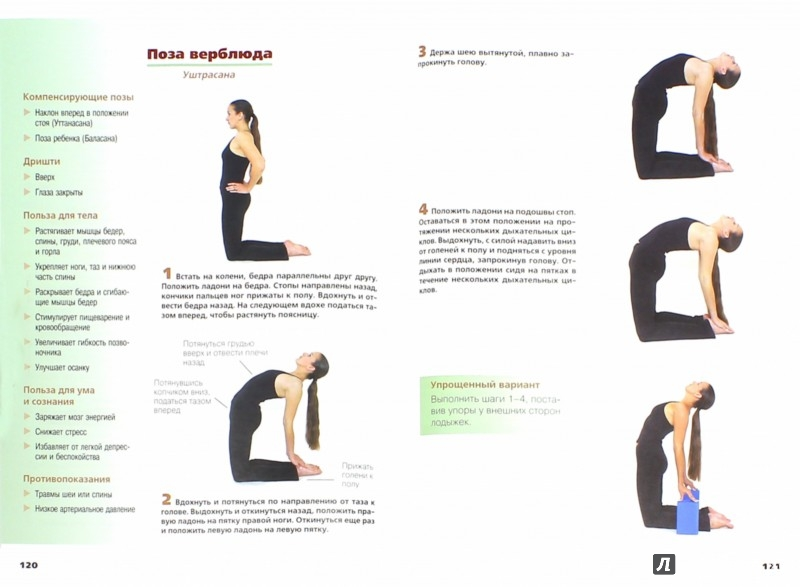 Иллюстрация 1 из 3 для Хатха-Йога в иллюстрациях - Кирк, Брук | Лабиринт - книги. Источник: Лабиринт