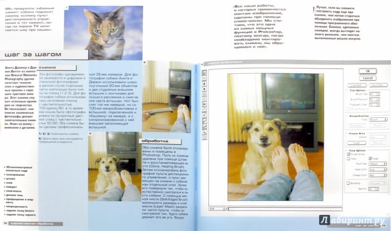 Иллюстрация 1 из 15 для Цифровая фотография: Практическое руководство для фотографов среднего уровня - Джон Клементс | Лабиринт - книги. Источник: Лабиринт