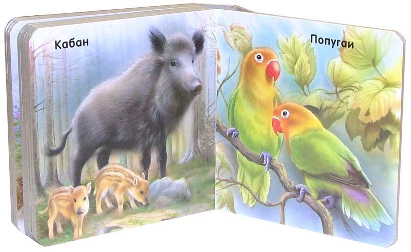 Иллюстрация 1 из 2 для Наши любимцы. Мои первые друзья | Лабиринт - книги. Источник: Лабиринт