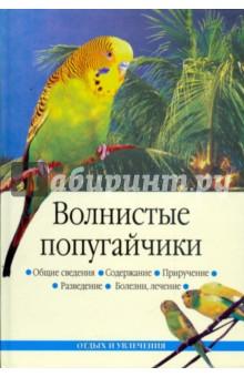 Волнистые попугайчики - Линиза Жалпанова