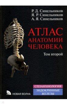 Скачать атлас анатомии человека синельников 2 том.