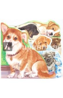 Собака и щенята - Ринат Курмашев