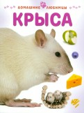 Мэтью Рейнер: Крыса