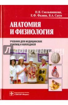 Учебник анатомии скачать