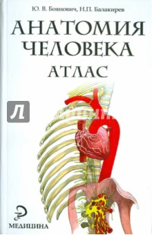 Анатомия человека. Атлас - Боянович, Балакирев