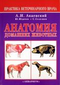 Акаевский, Юдичев, Селезнев: Анатомия домашних животных