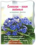 Наталья Власова: Сенполии  ваши любимые комнатные фиалки