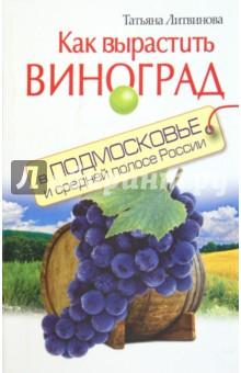 Как вырастить виноград в Подмосковье и России