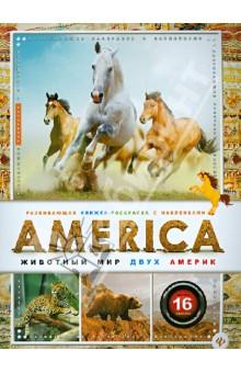 AMERICA. Животный мир двух Америк