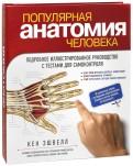 Кен Эшвелл: Популярная анатомия человека. Подробное иллюстрированное руководство с тестами для самоконтроля