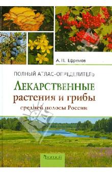 лекарственные растения средней полосы россии