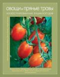 Елизаров, Ховрин, Янаева: Овощи и пряные травы. Иллюстрированная энциклопедия