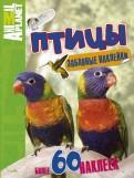 Птицы. С забавными наклейками