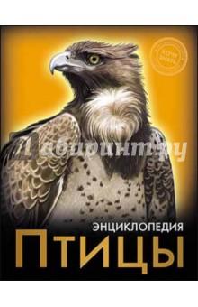 Купить Птицы ISBN: 978-5-378-17897-1