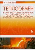Анатолий Макаров: Теплообмен в электродуговых и факельных металлургических печах