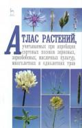 Пыльнев, Березкин, Рубец: Атлас растений, учитываемых при апробации сортовых посевов. Учебное пособие