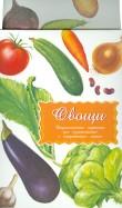 Дидактические карточки. Овощи