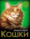 Леся Калугина: Хочу знать. Кошки