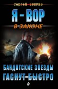 Сергей Зверев - Бандитские звезды гаснут быстро обложка книги