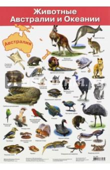 Плакат Животные Австралии и Океании (2858)