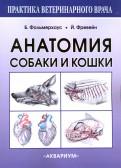 Амзельгрубер, Бёме, Вайбль: Анатомия собаки и кошки