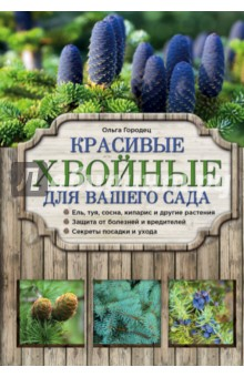 Купить Ольга Городец: Красивые хвойные для вашего сада ISBN: 978-5-699-85331-1