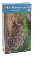 Мир на ладошке-2. На лесных тропинках (2011) обложка книги