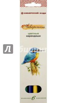Купить Карандаши цветные, акварельные Птицы Сибири , 6 цветов (СК083/06) ISBN: 4606998728108