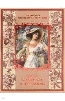 ebook A companion to the
