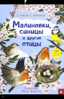 В гости к природе. Малиновки, синицы и другие птицы