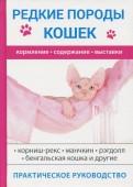 С. Бочкова: Редкие породы кошек