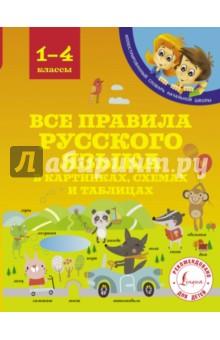 Все правила русского языка в картинках, схемах и таблицах - Сергей Матвеев