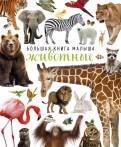 Животные обложка книги