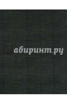 Тетрадь на кольцах 160 листов Черный бумвинил (ПБ16015)