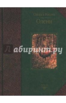 Олени - Руденко, Семашко
